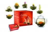 """Creano Geschenkset ErblühTee """"Weißer Tee"""" - 6 Teeblumen, 1 Creano Teekanne (500ml)"""